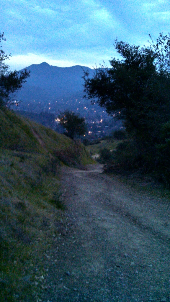 This is the trail Justin and Steve made me walk over at night. With scary animals lurking in the bushes.