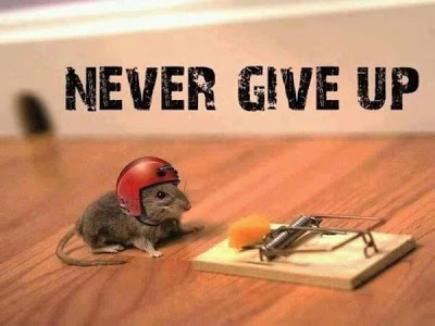 Took this from Michelle, though I might title it 'Never Give Up?'