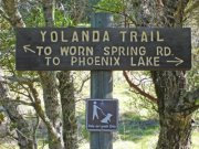 Follow Yolanda. And, no, I don't know what Yolanda means.